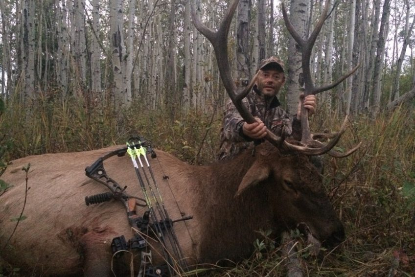 Mikes Outfitting elk bowhunting moose bowhunting alberta canada