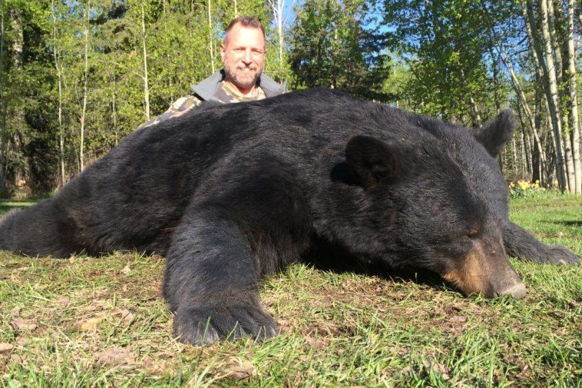 Mikes Outfitting Black Bear Hunting Alberta Canda